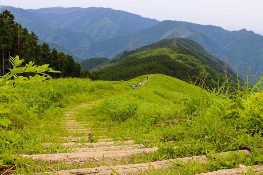 岩湧山山頂付近の稜線