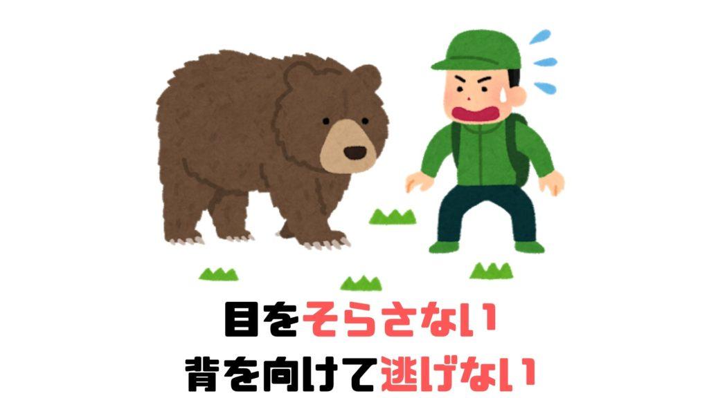 熊と遭遇してしまったときの画像